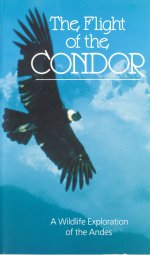 Flight of the Condor [1985] [DVD]