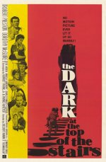 The Dark at the Top of the Stairs [1960] [DVD]